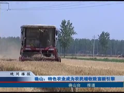 确山:特色农业成为农民增收致富新引擎