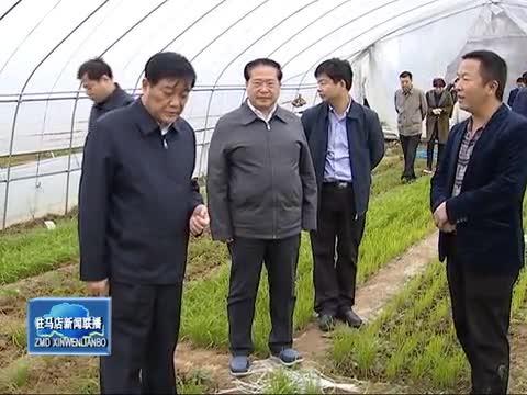 余学友到泌阳县调研指导产业扶贫工作