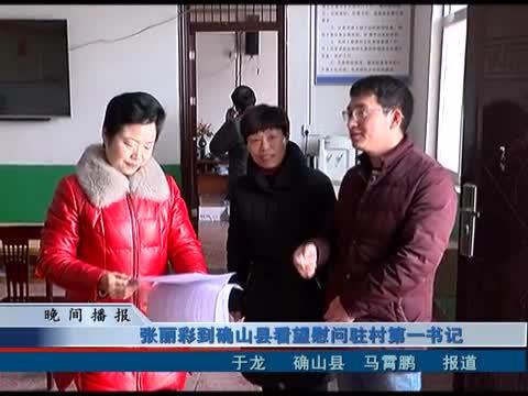 张丽彩到确山县看望慰问驻村第一书记