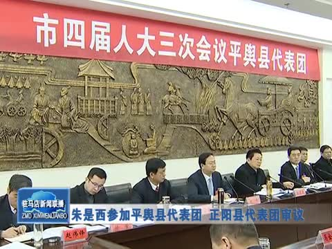 朱是西参加平舆县代表团 正阳县代表团审议