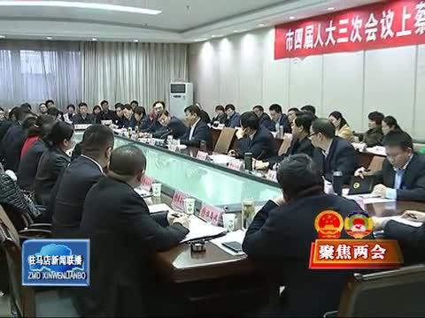 陈星参加上蔡县代表团、政协联组审议讨论
