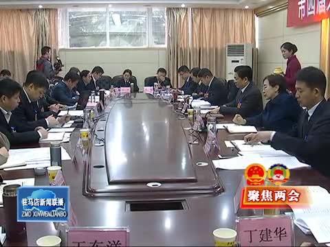 朱是西到西平县代表团与代表们一起审议讨论政府工作报告