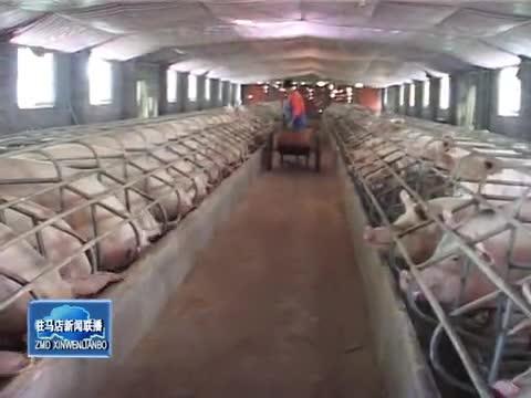 我市畜牧业持续健康快速发展