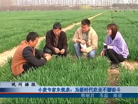 小麦专家朱统泉:为新时代农业不懈奋斗
