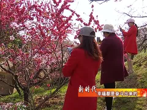 驿城区龙泉村:让农业更强 农村更美 农民更富