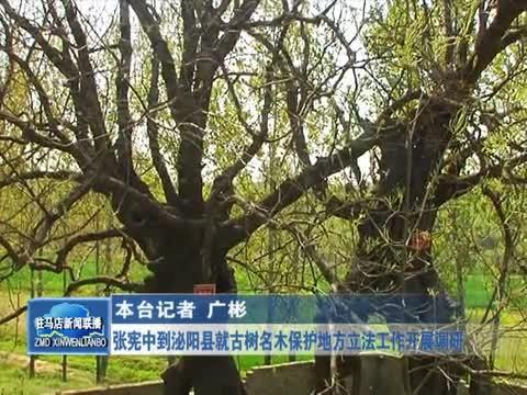 张宪中到泌阳县就古树名木保护地方立法工作开展调研