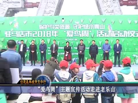 """""""爱鸟周""""主题宣传活动走进老乐山"""