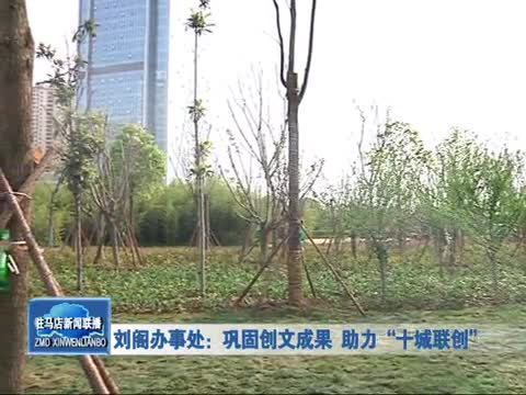 """刘阁办事处:巩固创文成果 助力""""十城联创"""""""