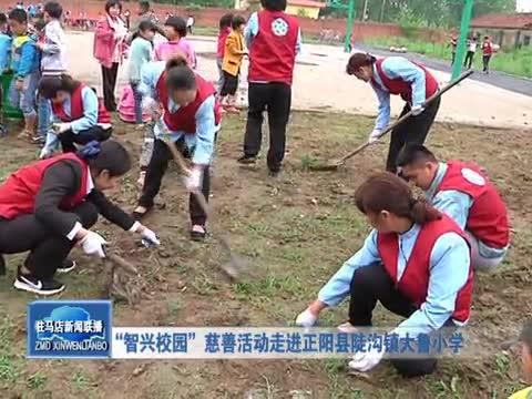 """""""智兴校园""""慈善活动走进正阳县陡沟大鲁小学"""