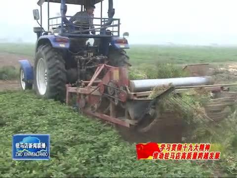 正阳县:围绕花生资源优势 全力打造国家级现代农业产业园区