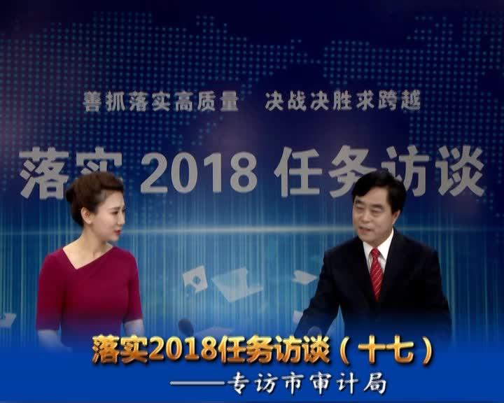 落实2018任务访谈--专访市审计局党组书记、局长李向伟