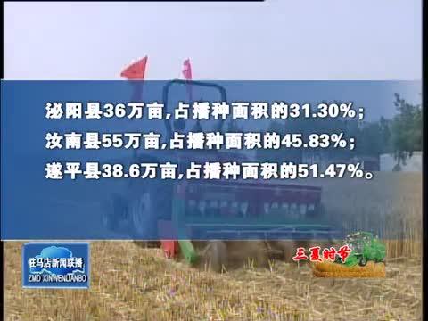 全市小麦机收过半 机播玉米164.95万亩