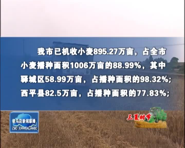 全市机收小麦895.27万亩 机播玉米面积350.28万亩