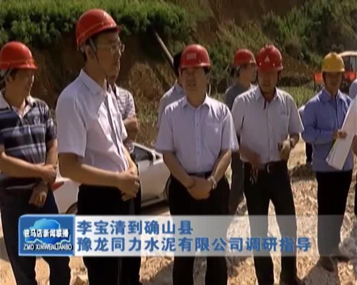 李宝清到确山县 豫龙同力水泥有限公司调研指导