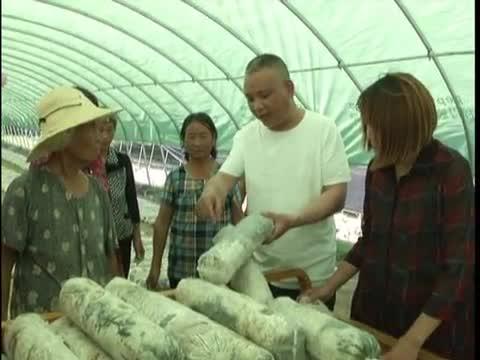 正阳县 实施巧媳妇工程 助力农村妇女精准脱贫