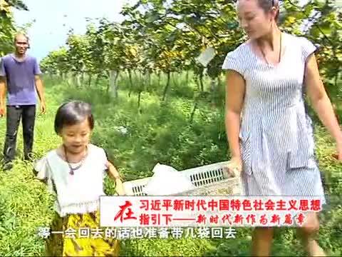 诸市镇魏庄村 特色农业种植助力农民增收致富