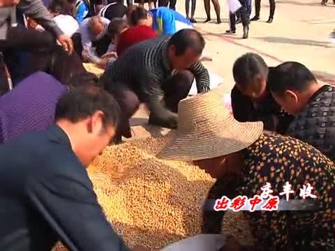 驿城区蚁蜂镇鲁湾村农民运动会乐翻天