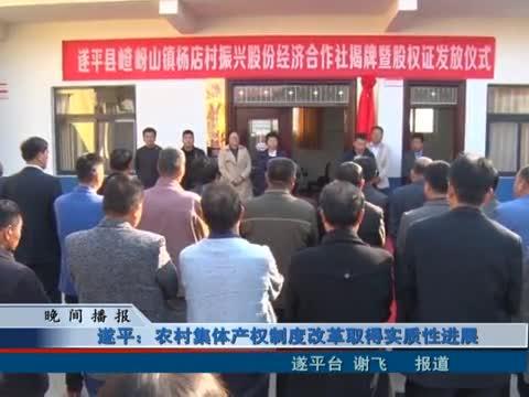 遂平:农村集体产权制度改革取得实质性进展