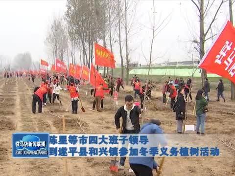 陈星等市四大班子领导到遂平县和兴镇参加冬季义务植树活动