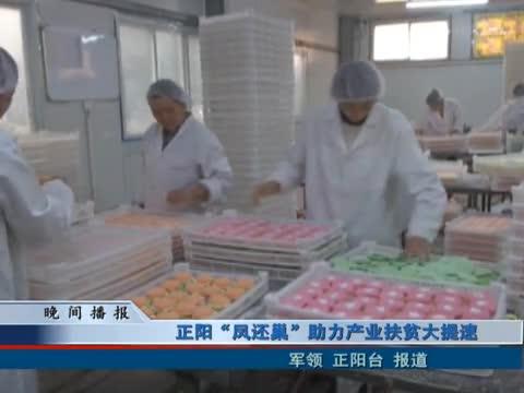 """正阳""""凤还巢""""助力产业扶贫大提速"""