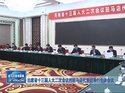 出席省十三届人大二次会议的驻马店代表团举行全体会议