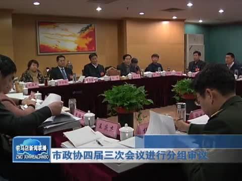 市政协四届三次会议进行分组审议
