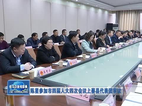 陈星参加市四届人大四次会议上蔡县代表团审议