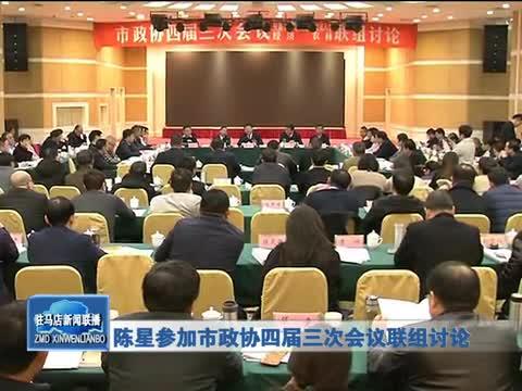陈星参加市政协四届三次会议联组讨论