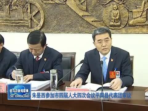 朱是西参加市四届人大四次会议平舆县代表团审议