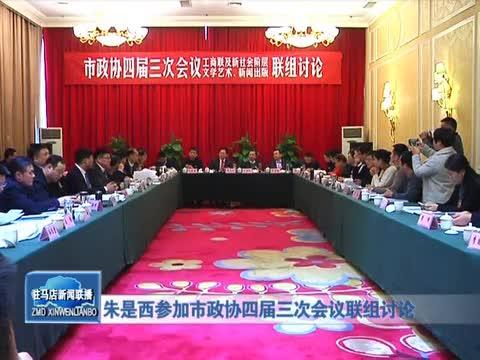 朱是西参加市政协四届三次会议联组讨论