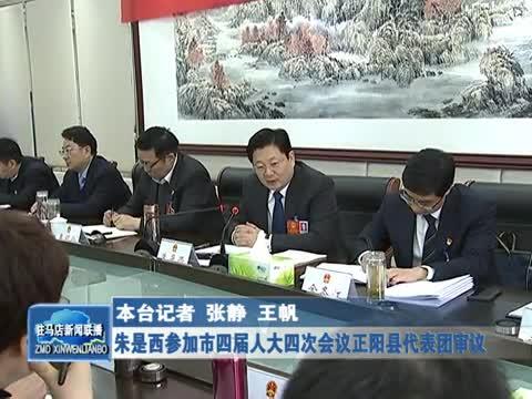 朱是西参加市四届人大四次会议正阳县代表团审议