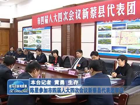 陈星参加市四届人大四次会议新蔡县代表团审议