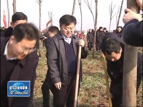 陈星等四大班子领导参加植树活动