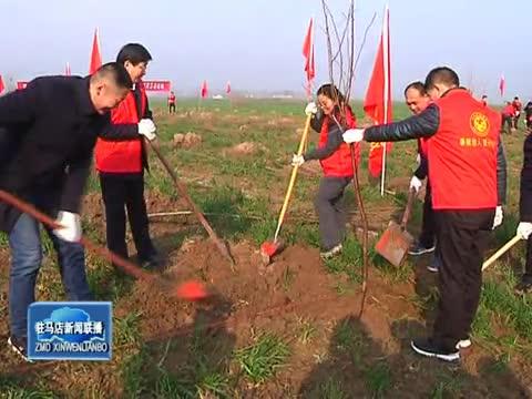 市城乡一体化示范区开展义务植树活动