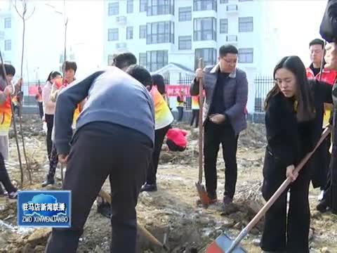天中义工联合会建设第十座爱心绿色基地