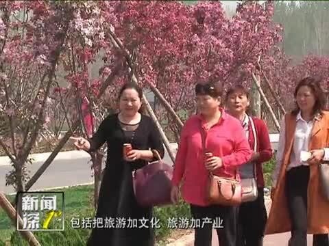 新闻深1°《西平:海棠花开 春满中原》299期