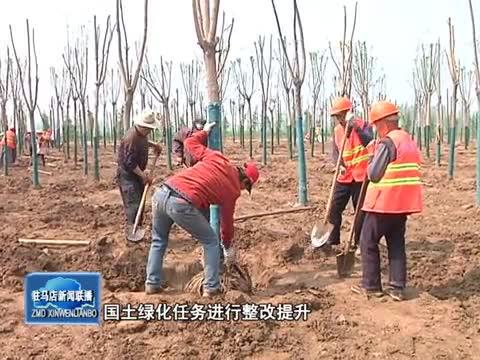驿城区国土绿化工作取得阶段性成效