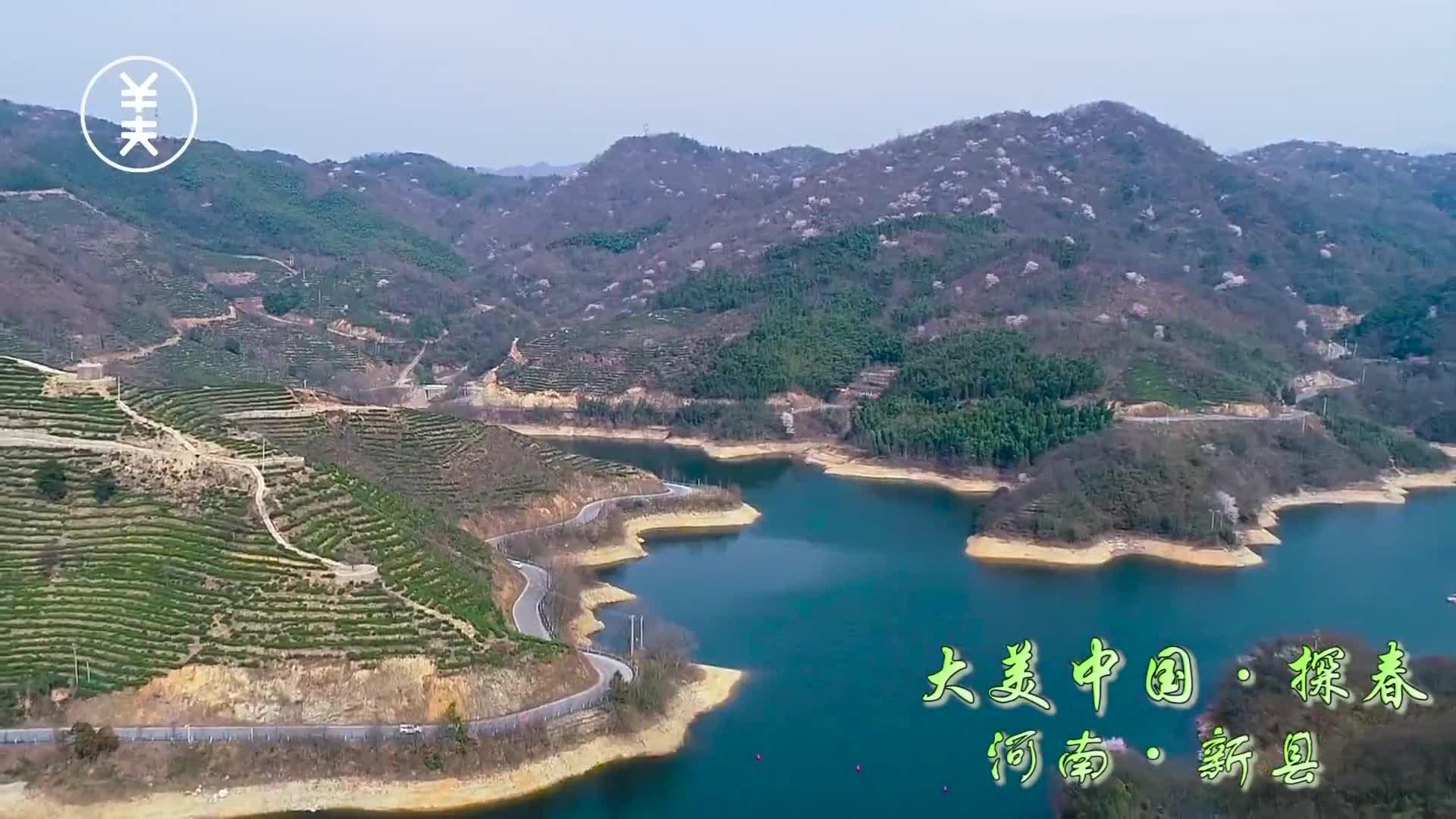 《大美中国·探春河南新县》