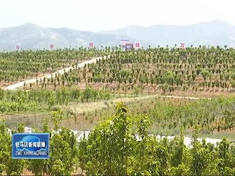 泌阳县大力实施生态立县战略 城乡绿化格局基本形成