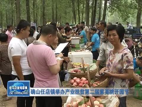 确山任店镇举办产业扶贫第二届紫英桃开园节