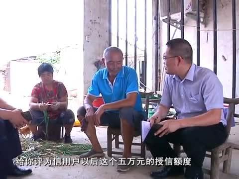 李涛的三农情结