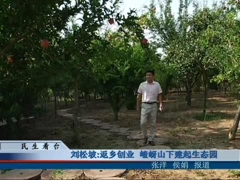 劉松坡返鄉創業 嵖岈山下建起生態園