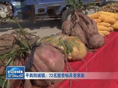 平舆阳城镇72名脱贫标兵受表彰