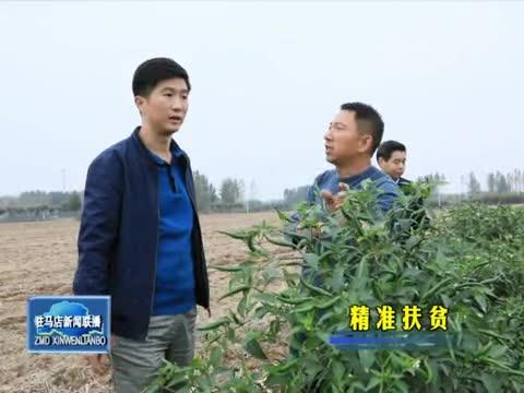 西平合水村种植辣椒富乡邻