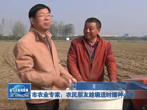 市農業專家 農民朋友趁墑適時播種小麥