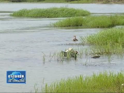 正陽加快淮河生態經濟帶建設 促進高質量跨越發展