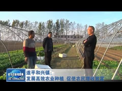 遂平和兴镇发展高效农业种植 促进农民增收致富