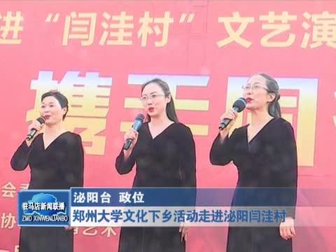 郑州大学文化下乡活动走进泌阳闫洼村