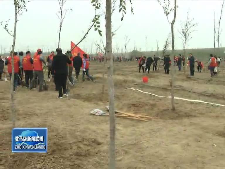 我市開展2019年冬季義務植樹活動 陳星等市四大班子領導參加植樹造林活動