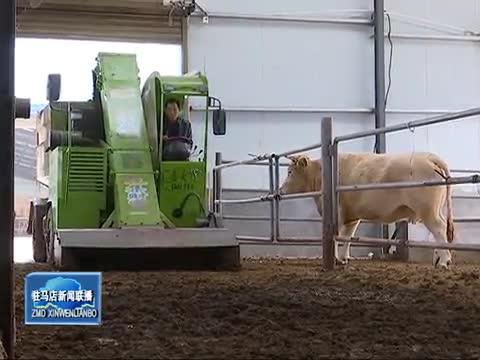 加快畜牧業轉型升級 推動生態綠色發展